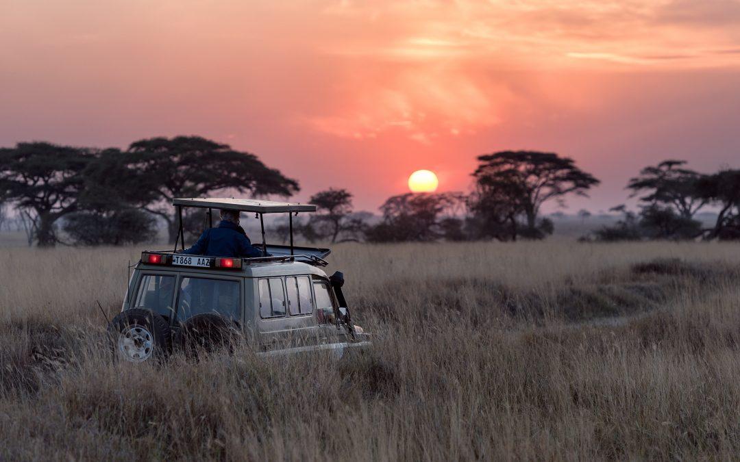 Tanzania Kerst Privé Safari